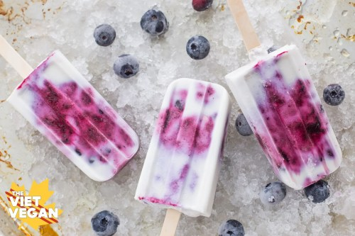 Vegan Blueberry Coconut Popsicles - The Viet Vegan