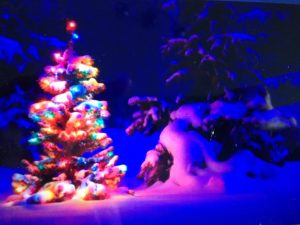 Dark night background with tree lit up by colourful Christmas Lights