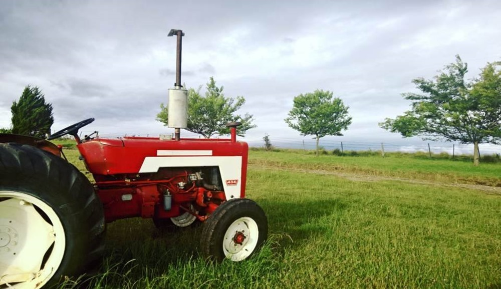 old red tractor update