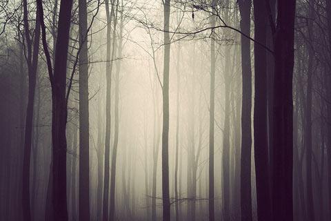 Kim-Holtermand photography