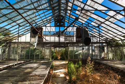 What Remains Of Greenhouses Used For Growing Marijuana