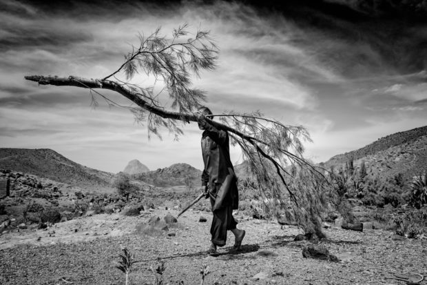 Picturing the Horrors of Climate Change in Southern Iran - Feature Shoot