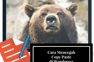 cara mencegah copy paste di wordpress