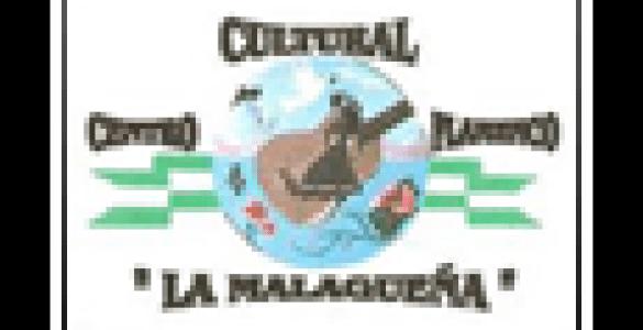 pf_centro_cultural_flamenco_la_malaguena