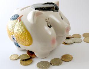 1102930_piggy_bank_1.jpg