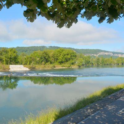 pêche sur le Rhône du brochet tondeur olivier