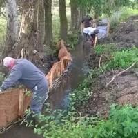 Restauration d'un cours d'eau