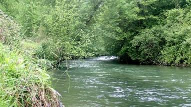 le lourdios rivière du haut béarn dans les Pyrénées-Atlantiques