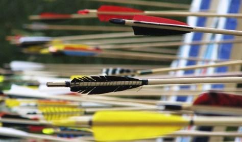 Flechas en una diana