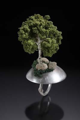 anello-albero