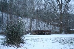 snowy woodrack