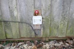 Spigot is installed