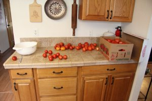 Lots of tomatoes