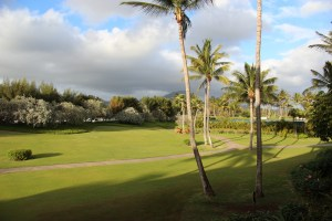 View from our balcony at the Hawaii