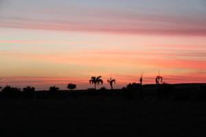 Sunset near Salt Pond Park