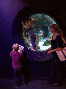 Hydes check out an aquarium