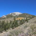 Mountain views near Salida