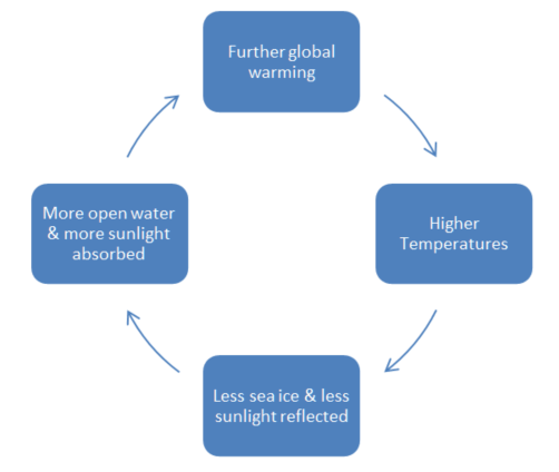 Diagram: The Arctic Ice Feedback Cycle