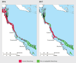 A map showing where the Great Barrier Reef bleached in 2016 and 2017