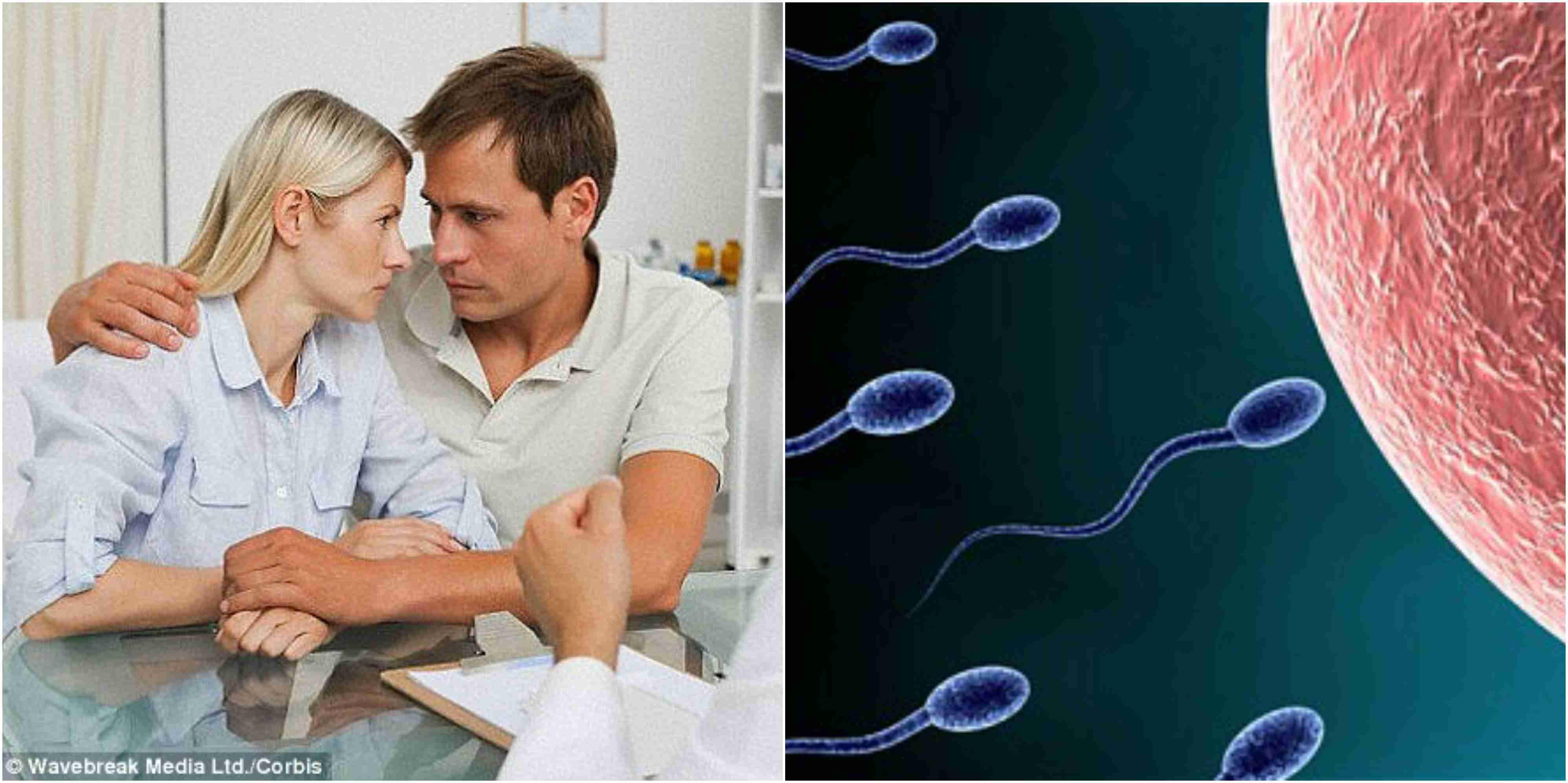 Sperm donation,illegal sperm advertising,facebook glasgow