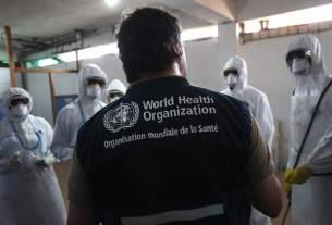 World Health Organisation,health,expense