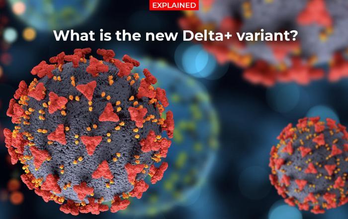 Delta Plus Variant