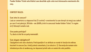 Golden Ticket W61 rules