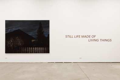 Noaptea Albă a Galeriilor 2017 -Sector 1 Gallery Still Life Made Of Living Things – Istvan Betuker