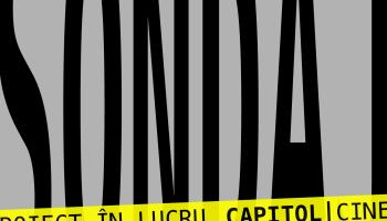 SONDAJ cinema / teatrul de vara Capitol