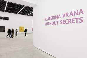 Nicodim Gallery Ecaterina Vrana - Without Secrets NAG 2017