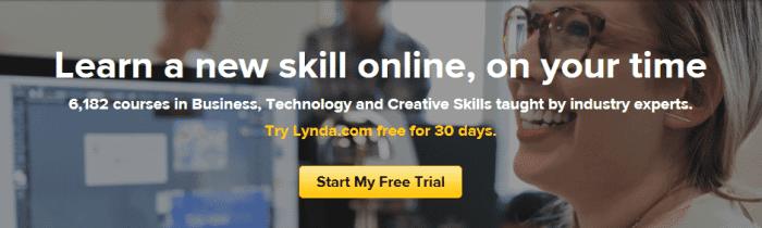 lynda business model