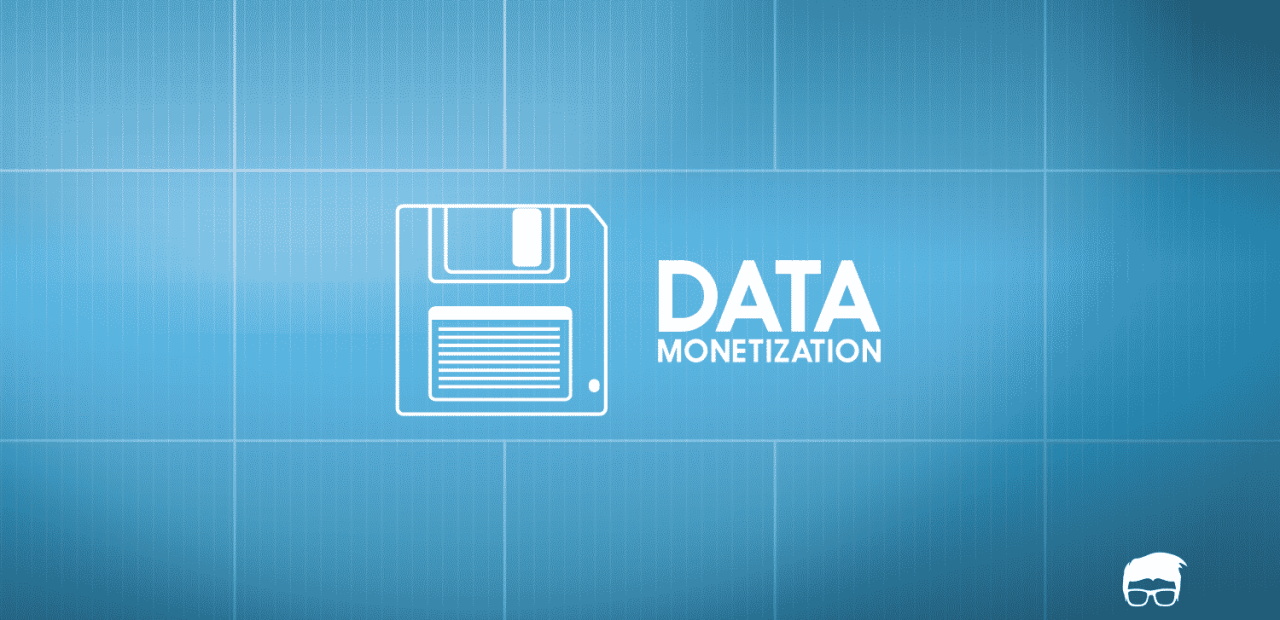 DATA MONETIZATION big data business model