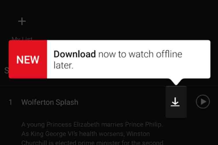 download now Netflix
