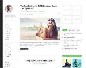 DW Minion WordPress The