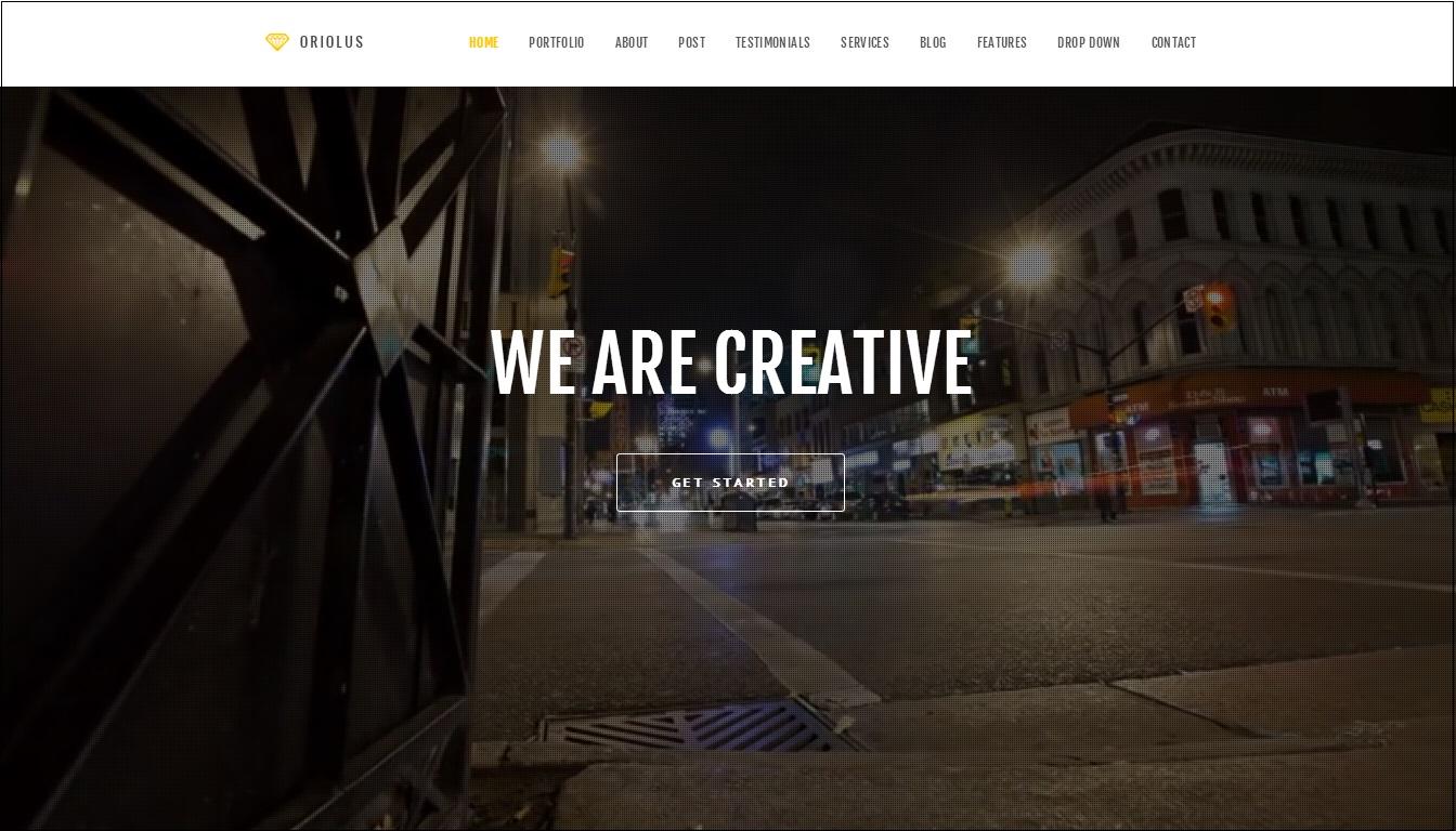 Oriolus WordPress Theme