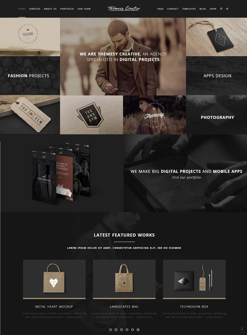 Themesy wordpress theme