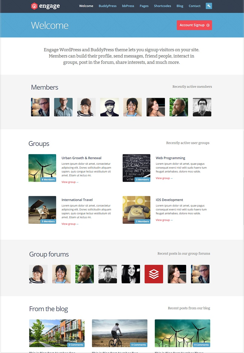 engage buddypress themes