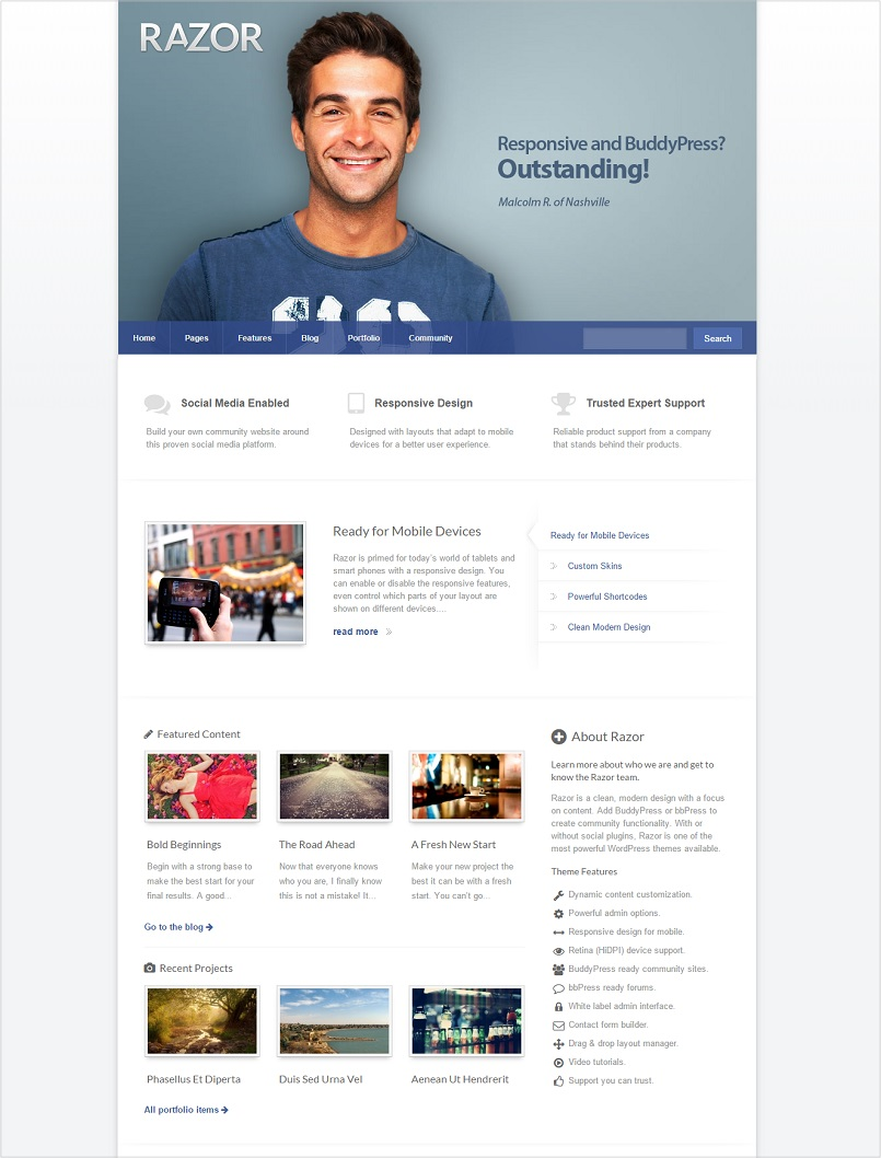 razor wordpress theme