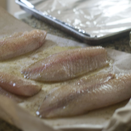 Seasoned & Oiled Tilapia