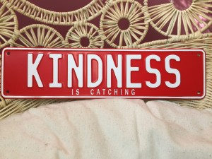 This is an image of Kindness Is Catching's fun numberplate sign