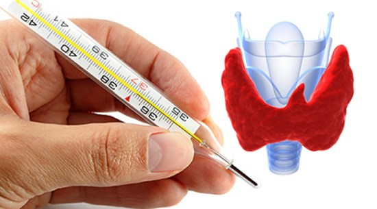 Check-functioning of the thyroid gland