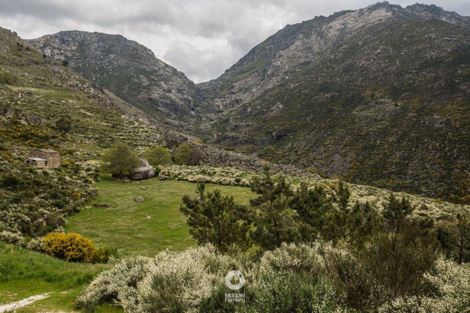 Paisagens Verdejantes de Loriga (Manuel Ferreira Photography)