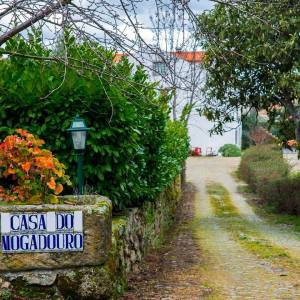 Casa Do Mogadouro Jardim