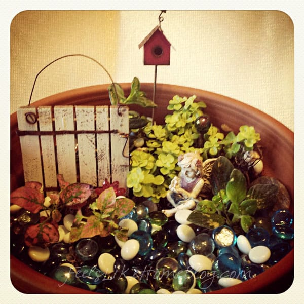 The fairy garden my mom helped me to make