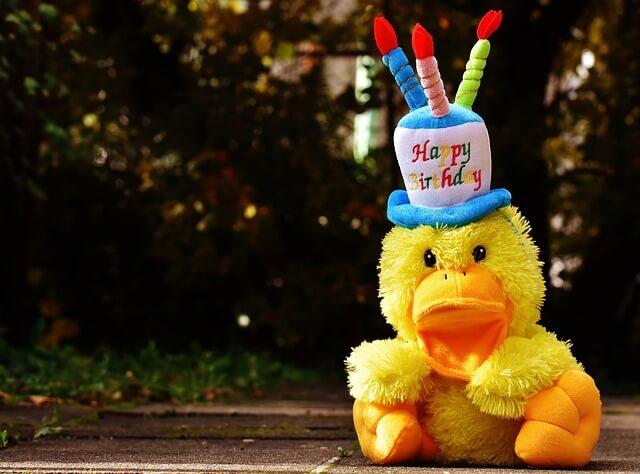 wie is er jarig dat ben jij Wie is er morgen jarig   De leukste verjaardagsliedjes  wie is er jarig dat ben jij