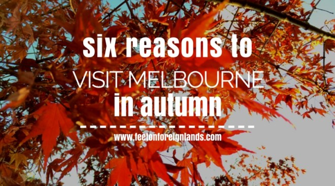 Six reasons to visit Melbourne in autumn: www.feetonforeignlands.com
