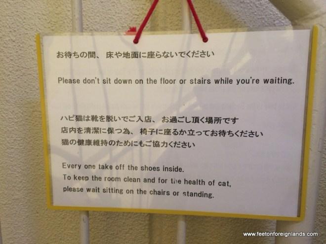 Hepineko Cat  Cafe in Tokyo (12)