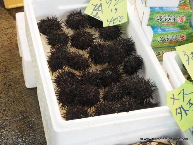Sushi Zanmai at Tsukiji Fish Market in Tokyo: www.feetonforeignlands.com