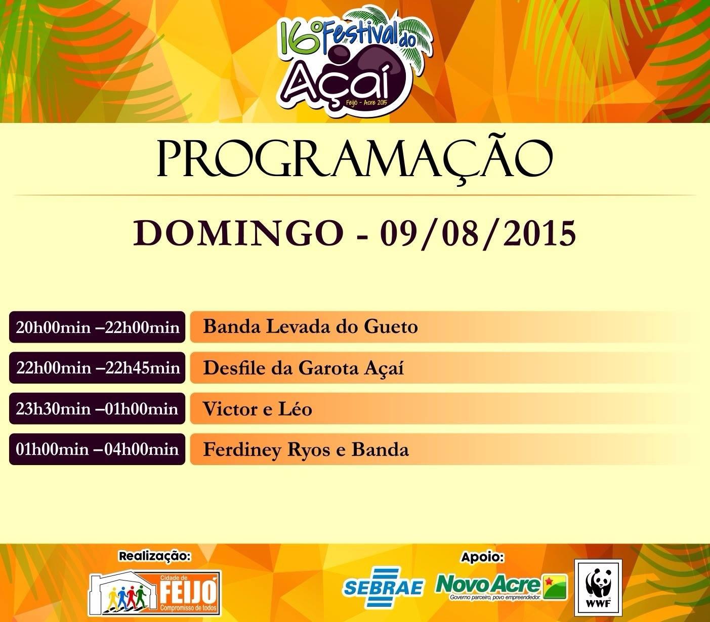festivaldoacai2015-0009