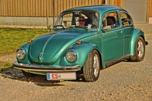 HDR-Bug2